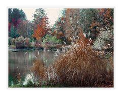 Herbst im Wörishofen