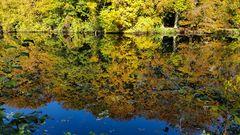 Herbst-Impression 4