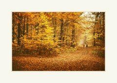 Herbst-Impressionen 2