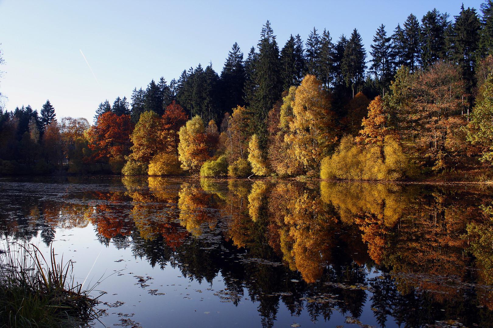 Herbst - Impressionen