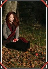Herbst - Impressionen III