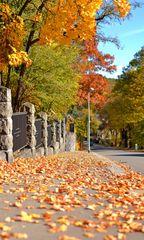 Herbst in Aue