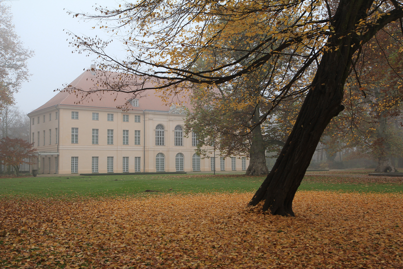 Herbst in Berlin - Schlosspark Niederschönhausen