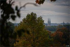 Herbst in Billerbeck...