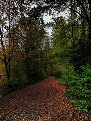 Herbst in Bönen (1)
