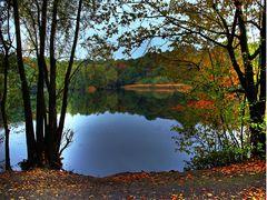 Herbst in Bönen (2)