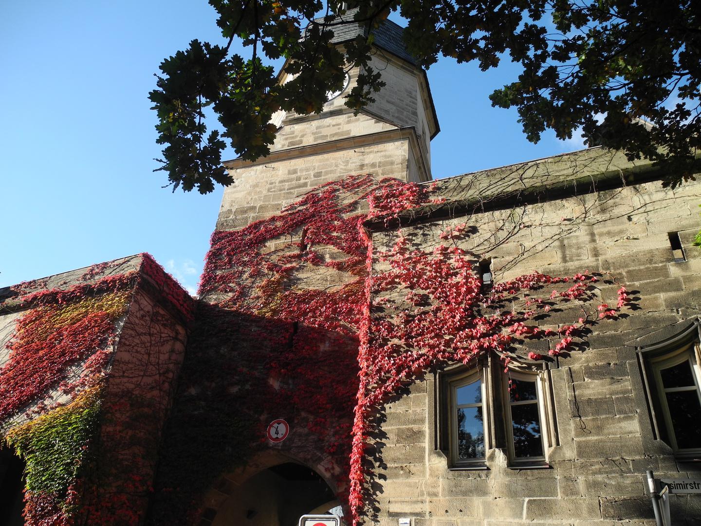 Herbst in Coburg