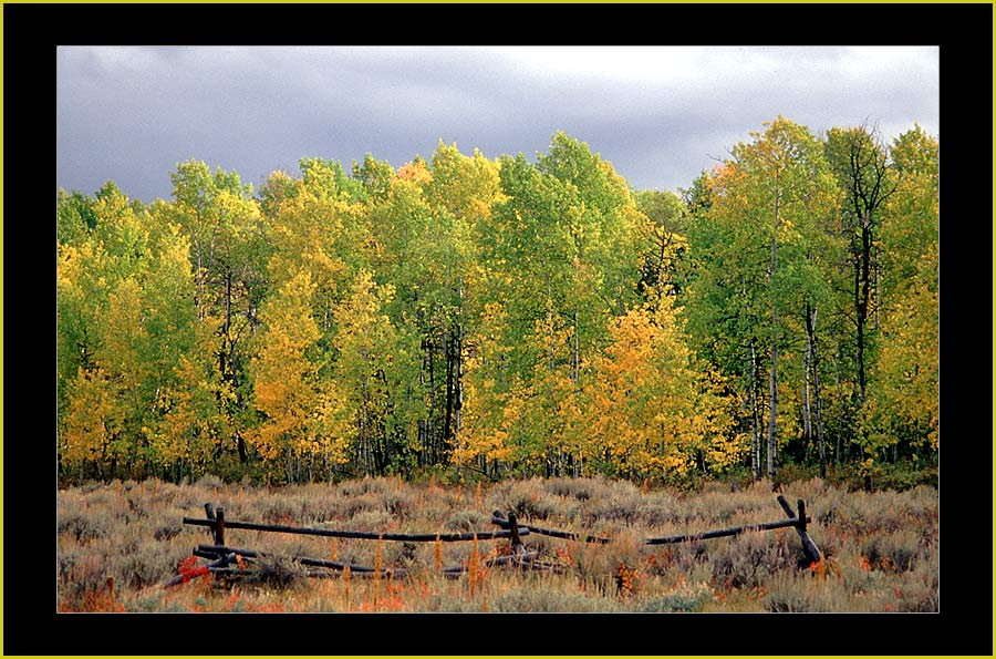 Herbst in Colorado