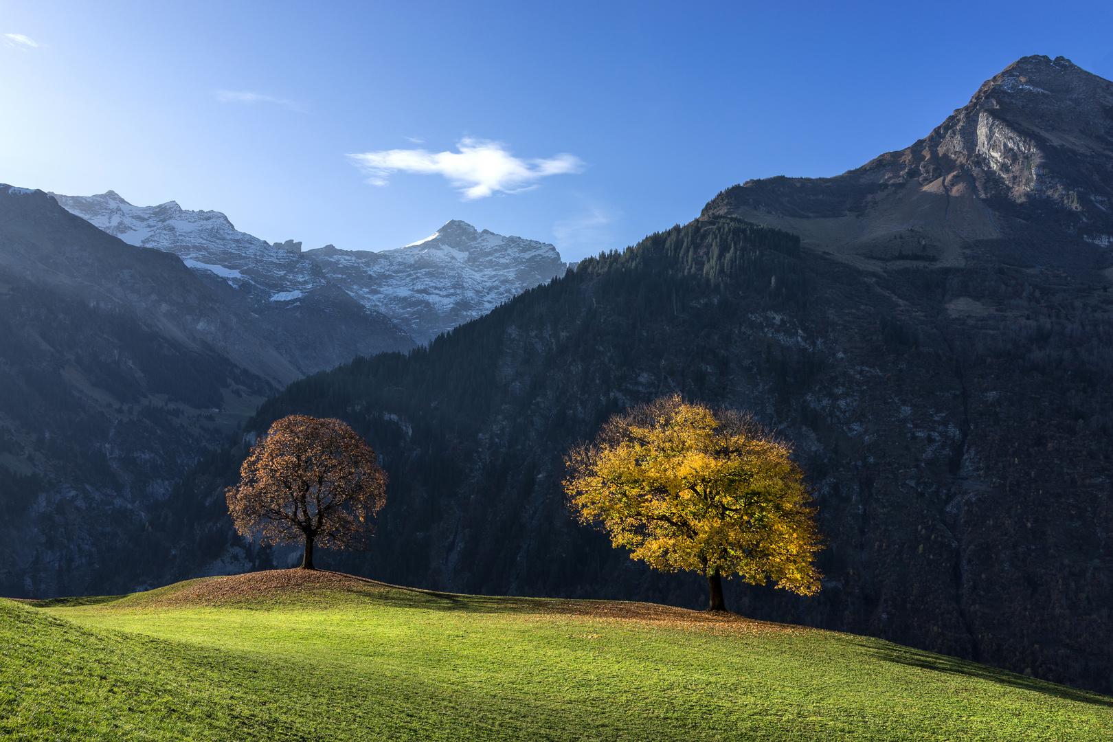 Herbst in den Bergen / 2
