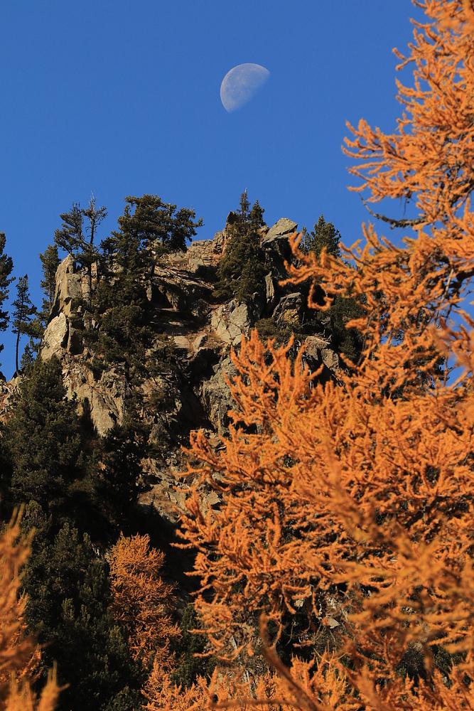Herbst in den Bergen