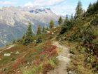 Herbst in den französischen Alpen bei Chamonix