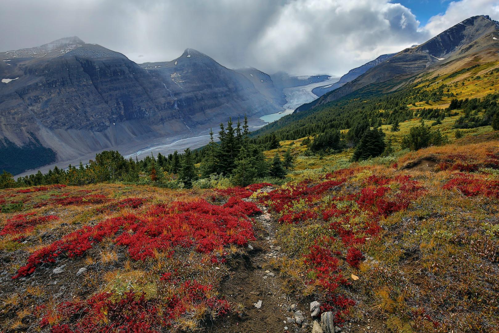 Herbst in den Rockies