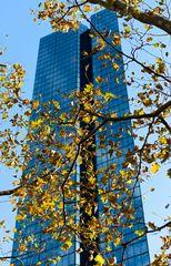 Herbst in der City...