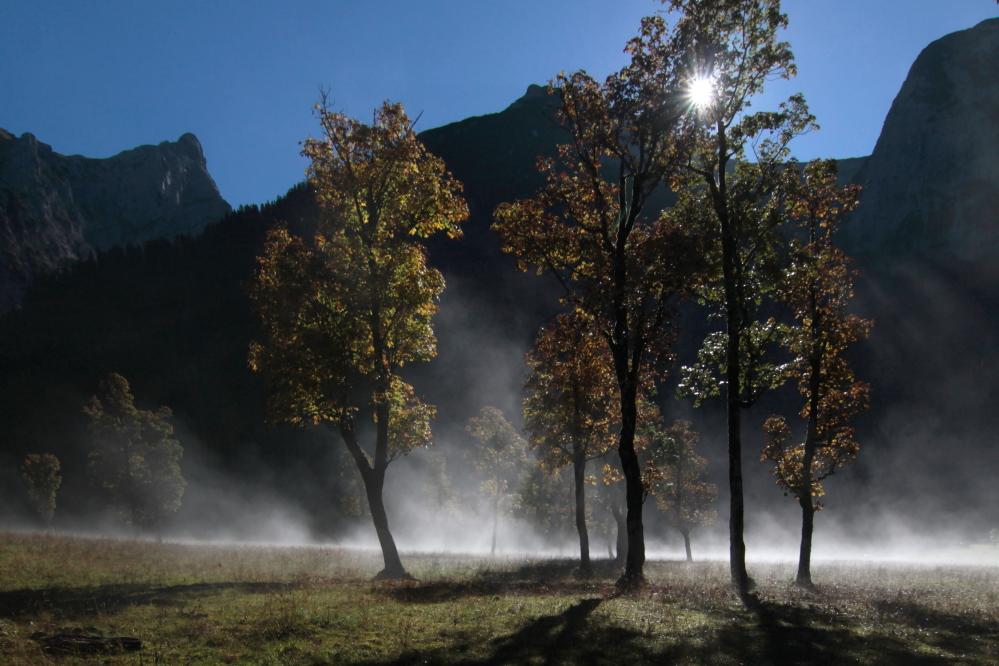 Herbst in der Eng