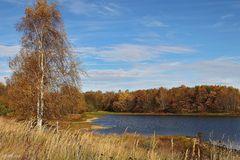 Herbst in der Heide - 2