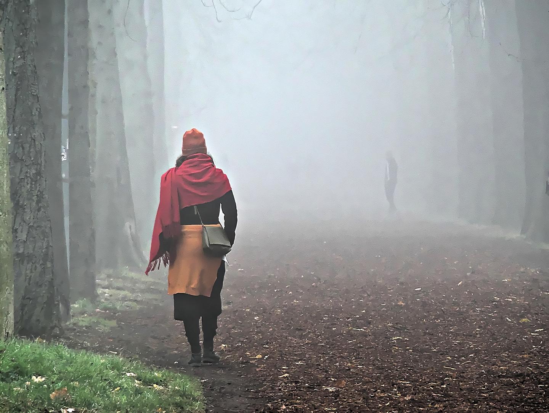 Herbst in der Praterhauptallee
