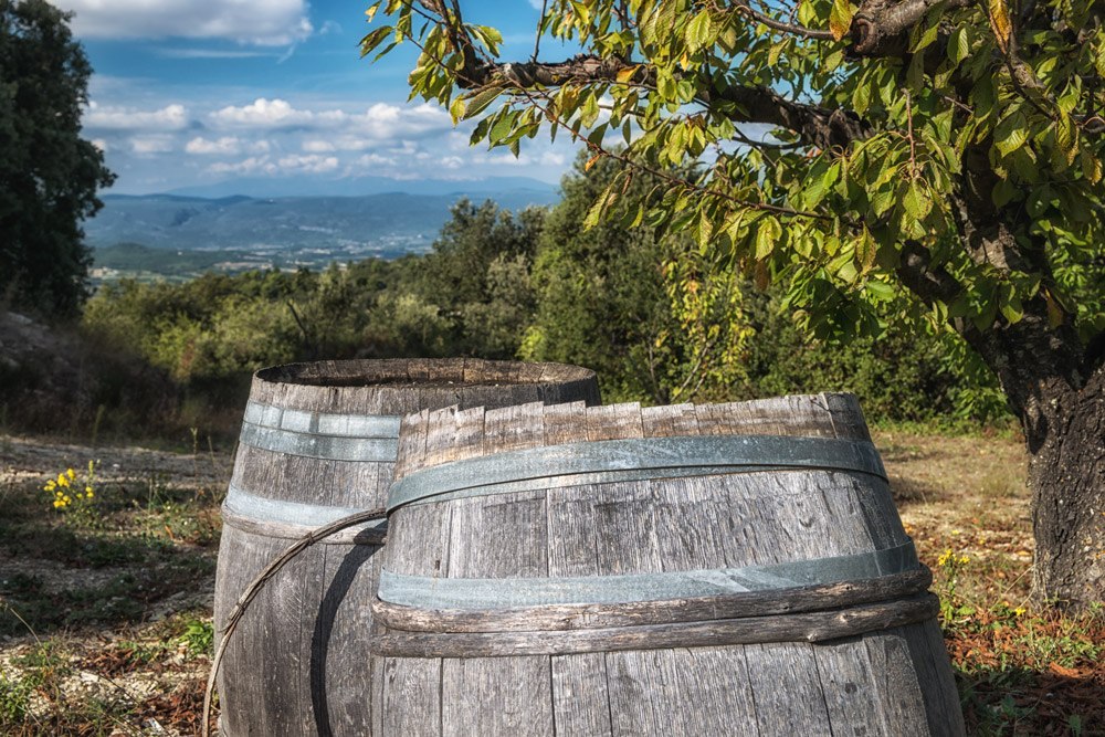 Herbst in der Provence