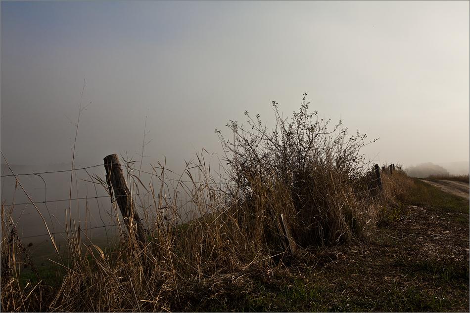 Herbst in der Toscana III