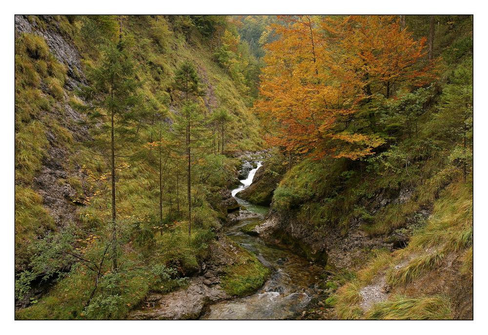 Herbst in der Weißbachschlucht
