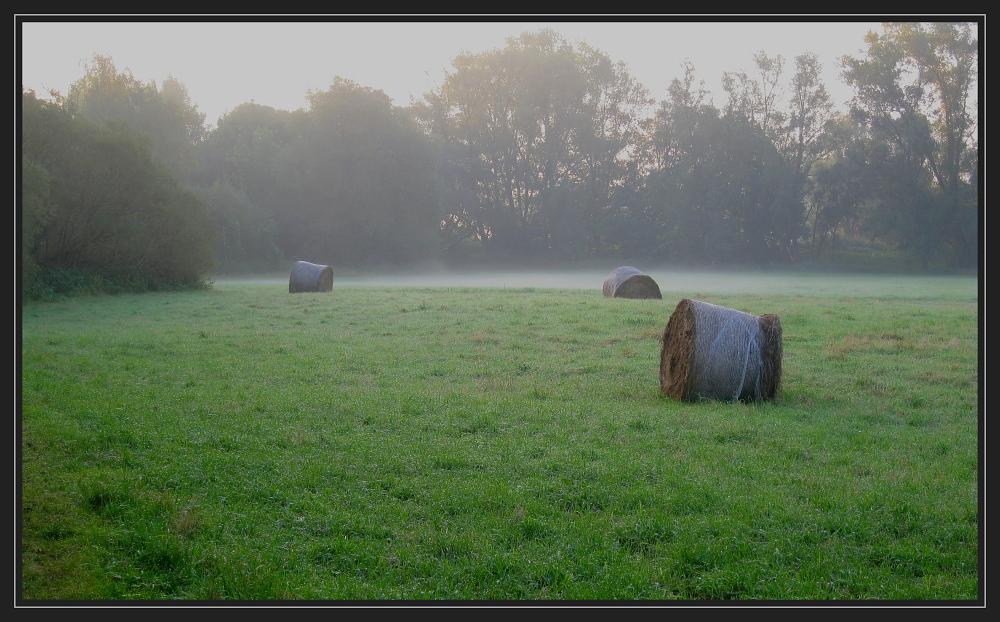 Herbst in der Wesermarsch 3
