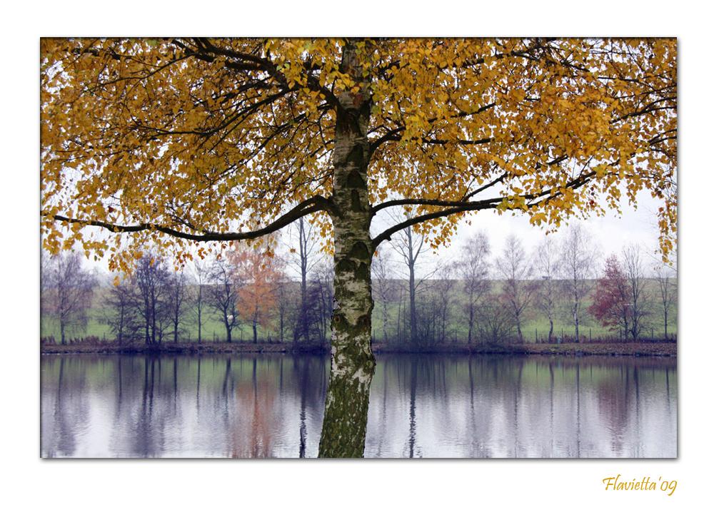 Herbst in Deutchland