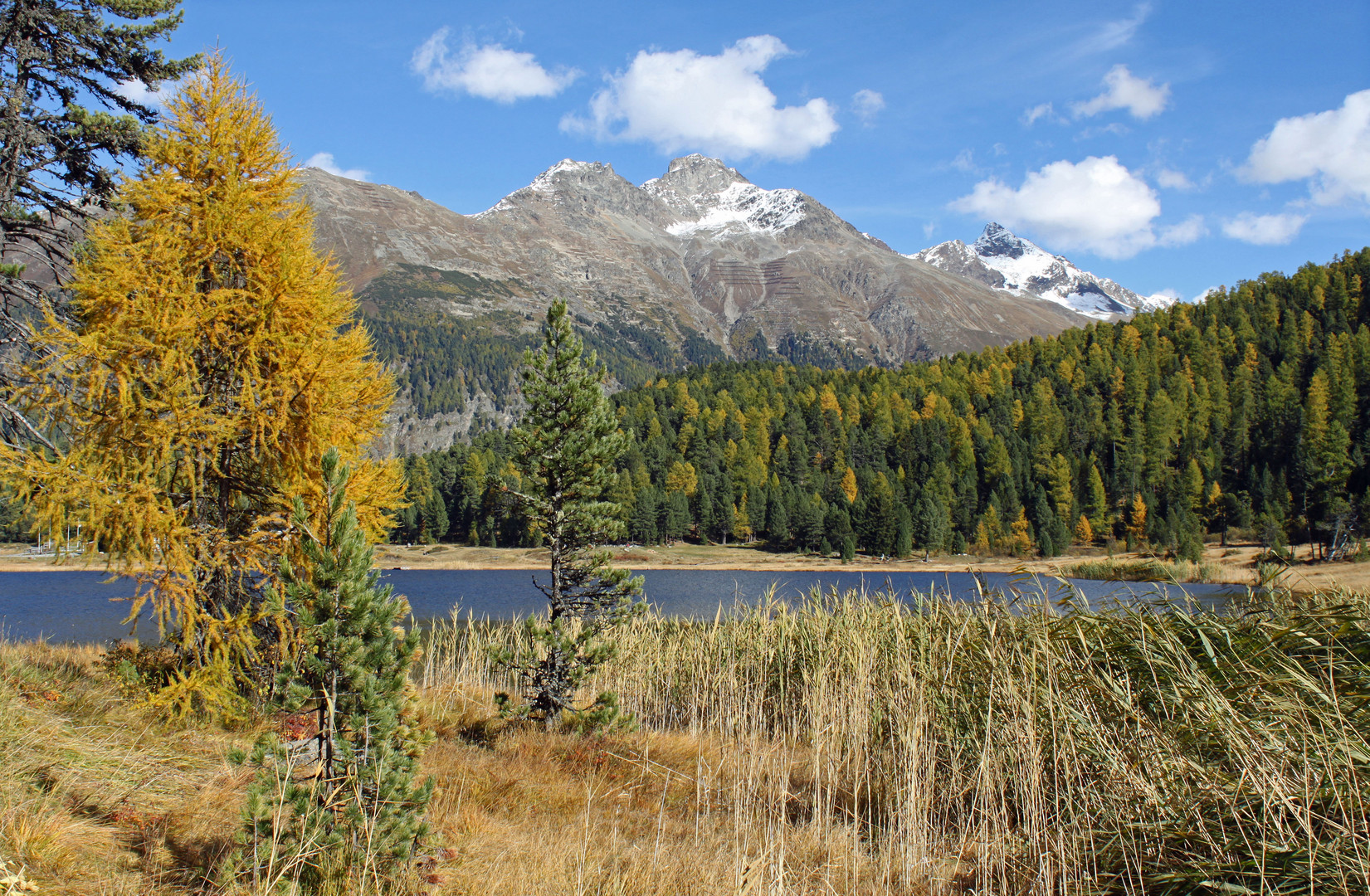 Herbst in Engadin 4