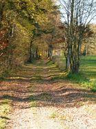 Herbst in Grafenwöhr