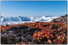 Herbst in Grönland