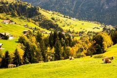 Herbst in Habkern_1