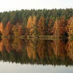 Herbst in Hachemühle