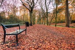 Herbst in Holland