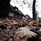 Herbst in Immerath
