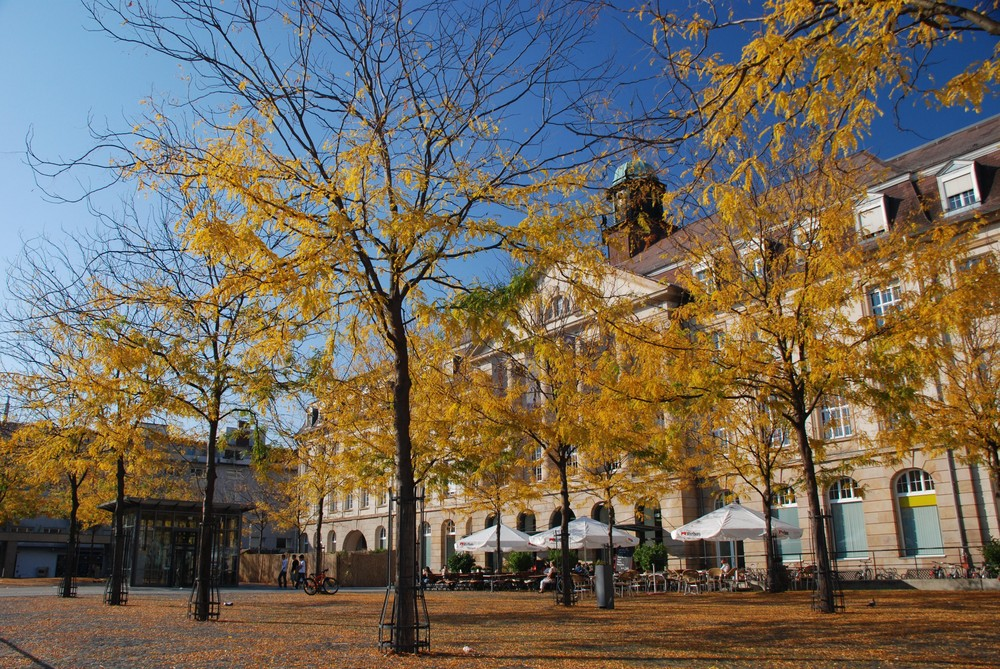 Herbst in Karlsruhe an der Postgalarie