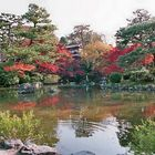Herbst in Kyoto 1