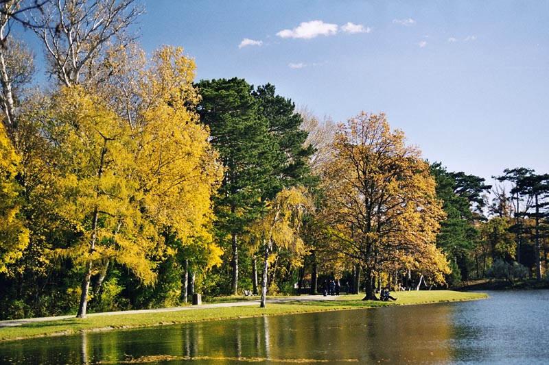 Herbst in Laxenburg