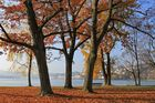 Herbst in Luzern