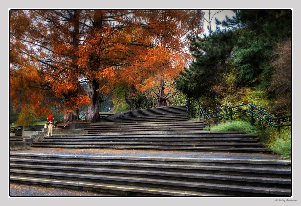 Herbst in Oberlaa in Wien