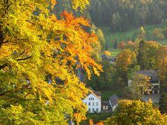 Herbst in Oybin- Zittauer Gebirge