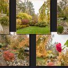 Herbst in Reinwalds Garten