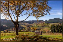 Herbst in Richstein