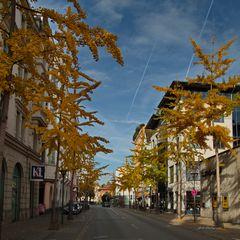 Herbst in Rosenheim