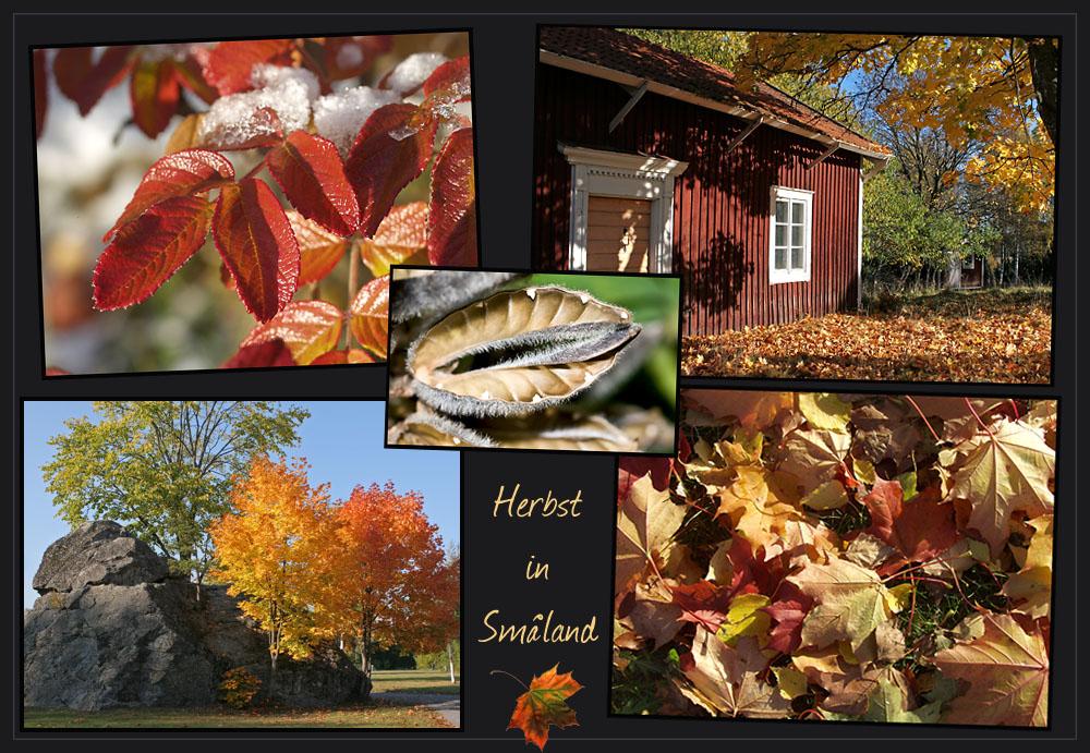 Herbst in Småland / Schweden