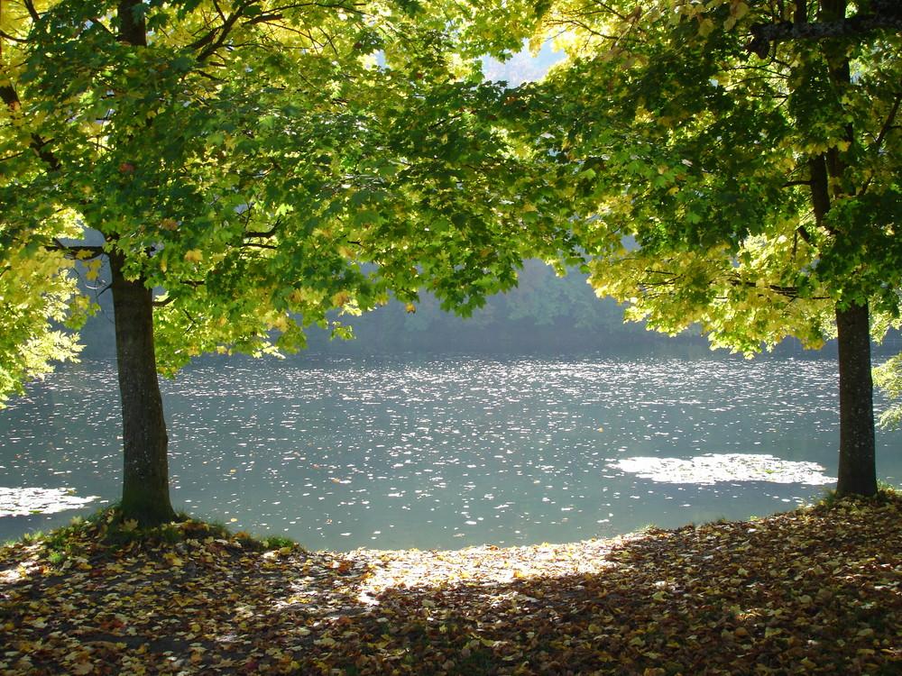 Herbst in St. Gallen die 2. !!