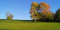 Herbst in Südbaden