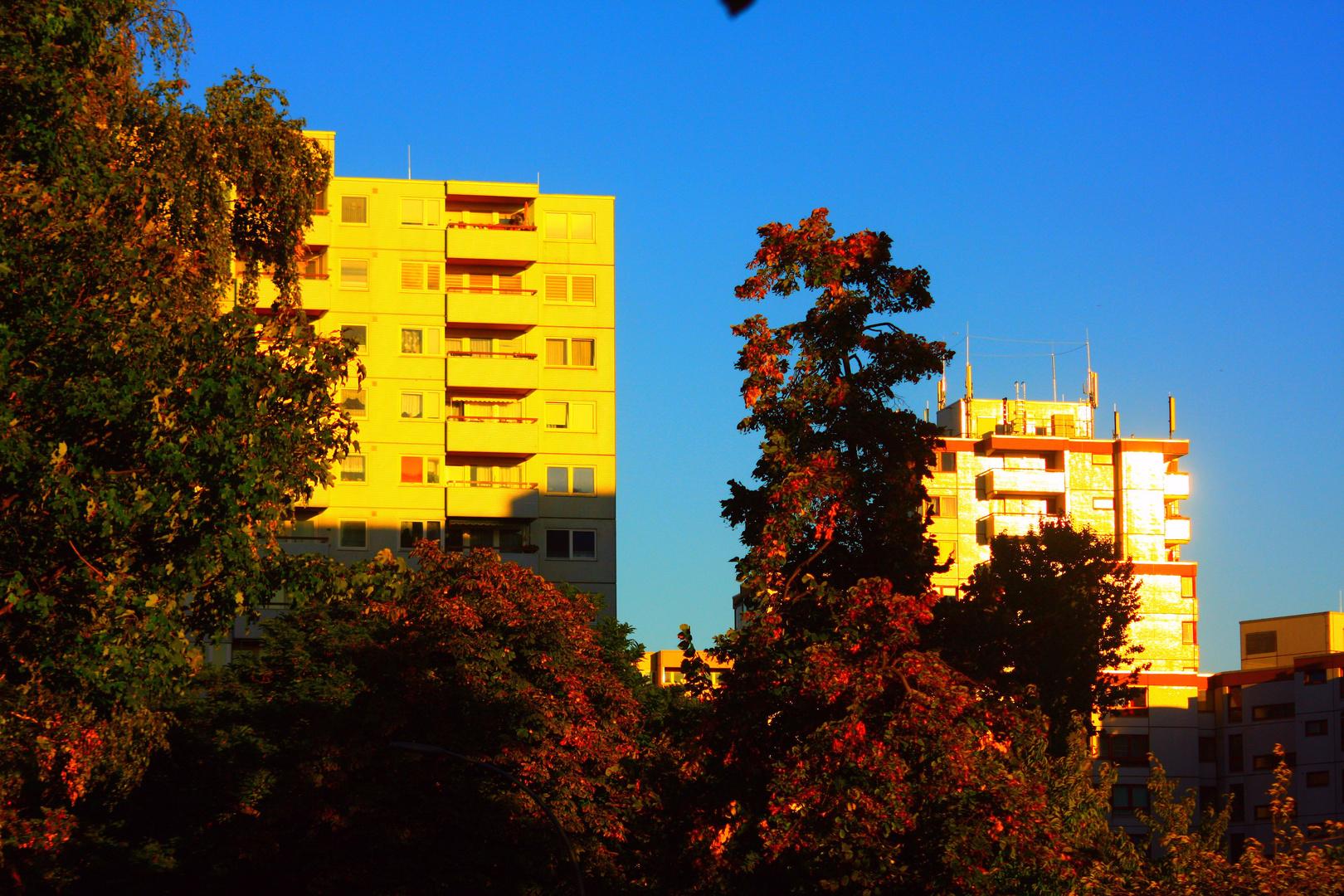 Herbst in Tegel-Süd