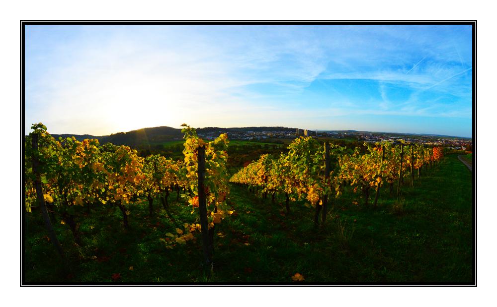 Herbst in Winnenden.....
