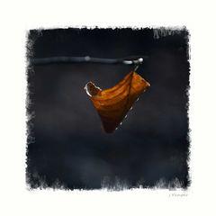 - Herbst-Kunst 4 -