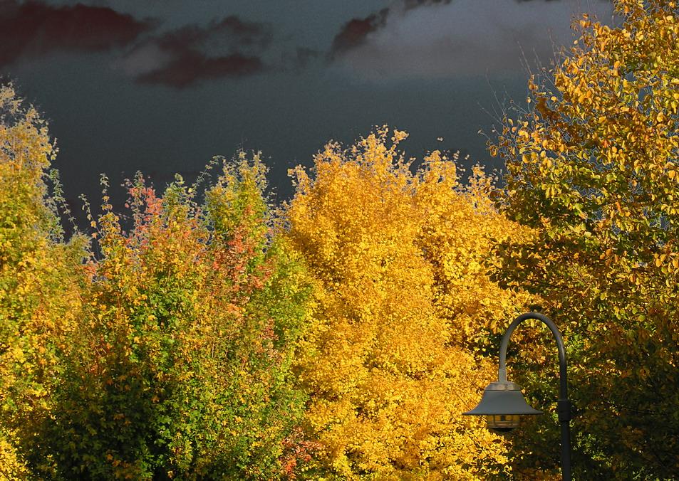 Herbst lässt sein gülden Band wieder flattern durch die Lüfte . . .