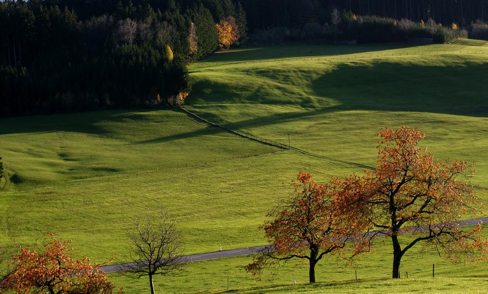 Herbst macht Farbe
