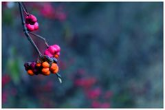 Herbst malen...